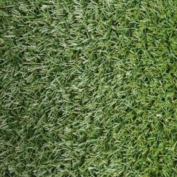 Искусственная трава Ideal Erba, 2м