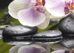 Панно Береза-керамика Азалия Орхидея 3 фисташковый 25x35