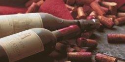 Вставка Нефрит-керамика Тоскана 04-01-1-10-05-15-712-0 красная 50х25
