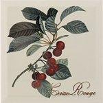 Декор Monopole Ceramica Decor Provence Cerie Rouge серый 20х20